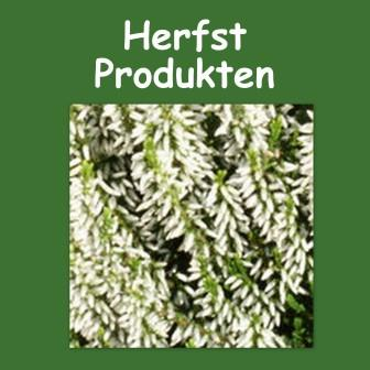 Herfst producten